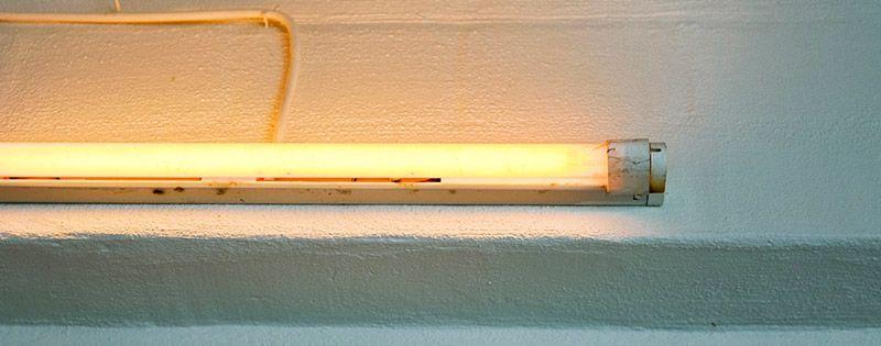 tubes LED bon marché